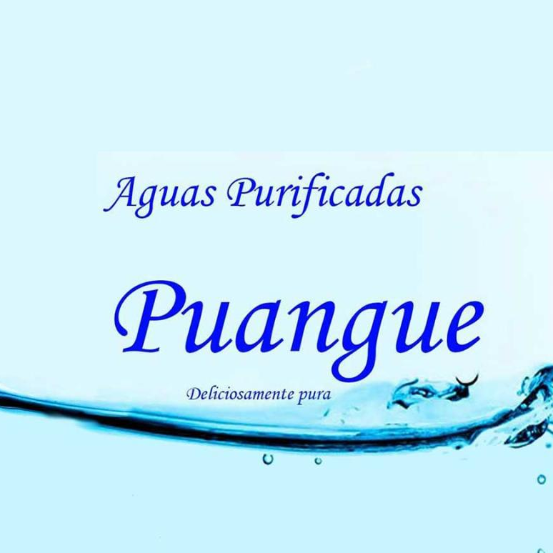 Aguas Purificadas Puangue